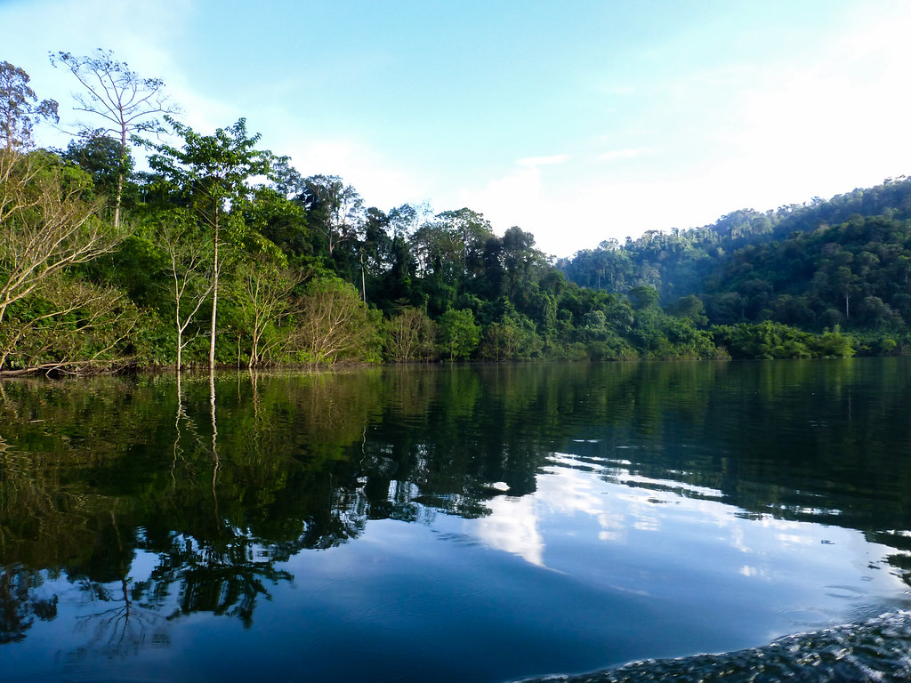 WildLive Trip with Writers to Khao Yai National Park   Flickr
