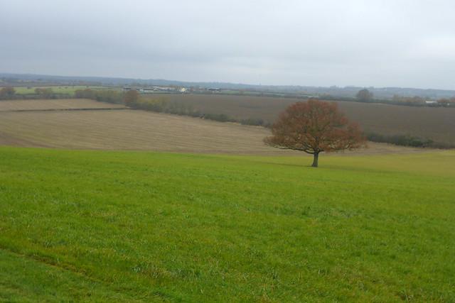Near Great Wigborough