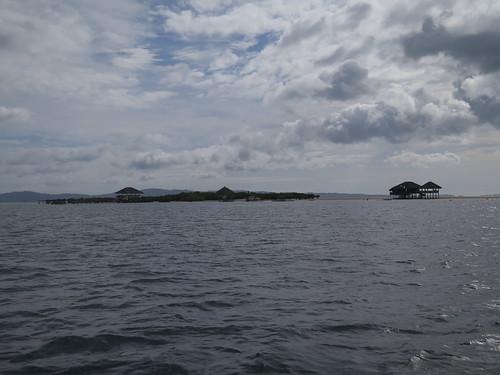 filippinene philippines masbate buntodreef buntodreefmarinesanctuary