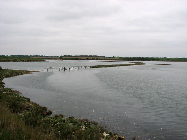 Marshes beside the Blackwater near Tollesbury