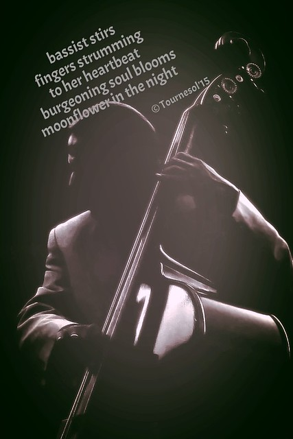 Double_Bass_Player_II_by_thereisnoband