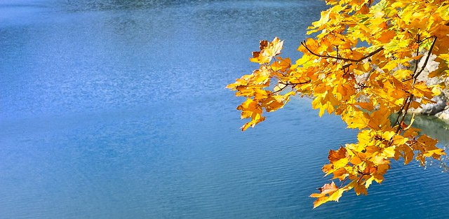 ... lungo gli argini del lago (02) ...