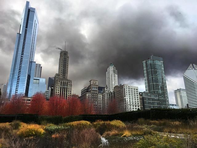 Autumn Drama, Lurie Garden, Chicago, November 10, 2017 2 full bpz (in explore)