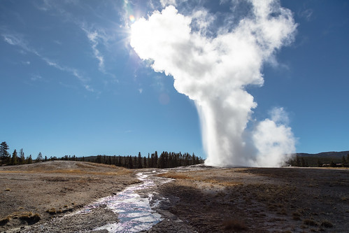 Old Faithful afternoon eruption   by YellowstoneNPS