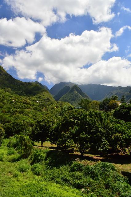 L'Entre Deux, Île de La Réunion