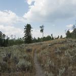 Sagebrush meadows surrounding Emma Matilda Lake
