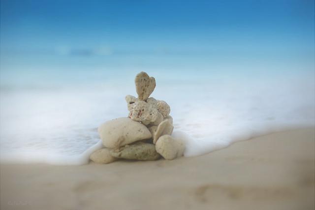 I ❤️ the beach