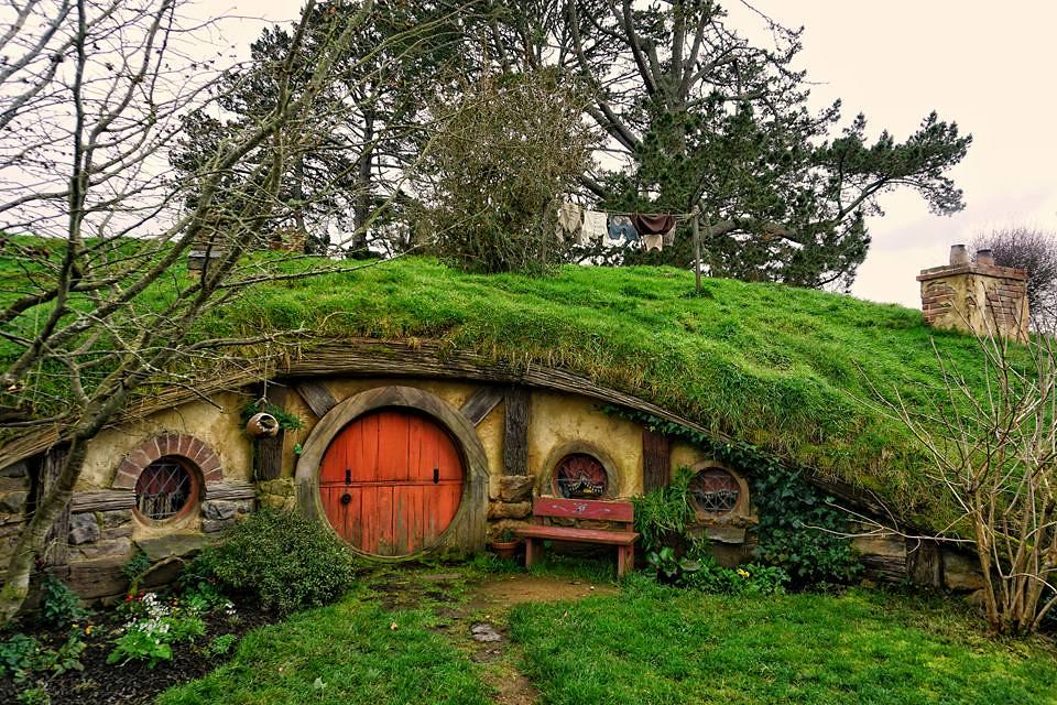 New Zealand- Hobbiton 8