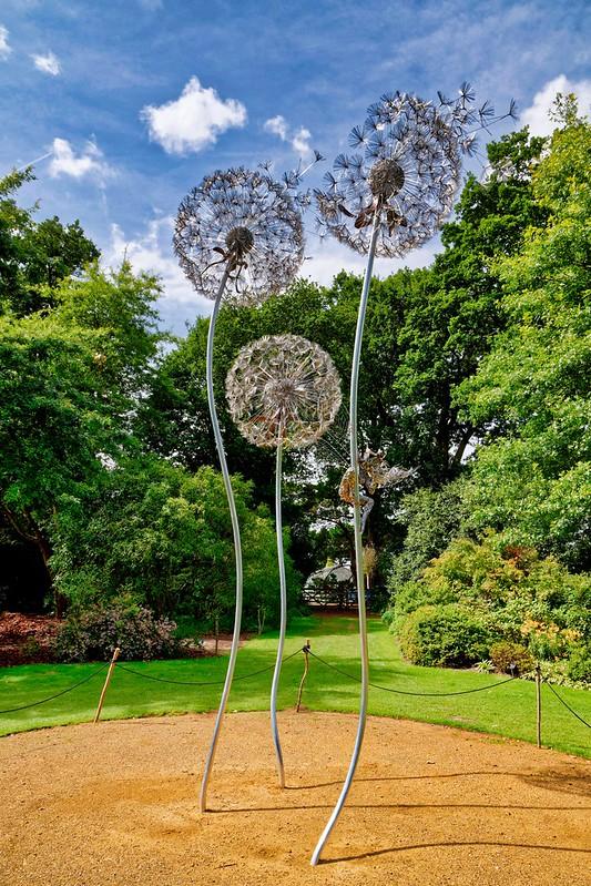 Dandelion Sculpture, RHS Wisley