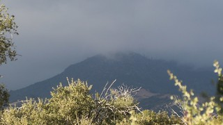332 The clouds are rolling in - zoomed-in view of misty clouds on Cuyamaca Peak | by _JFR_