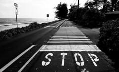 "Kauai Roadway ""Stop"""