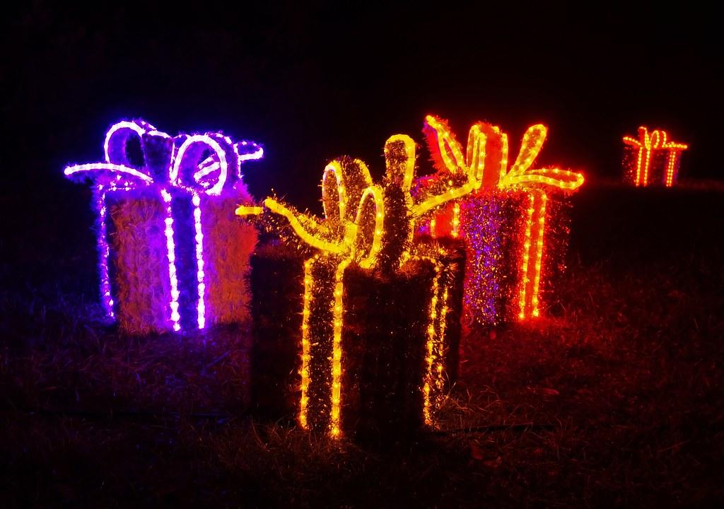 Botanischer garten berlin weihnachten 2017