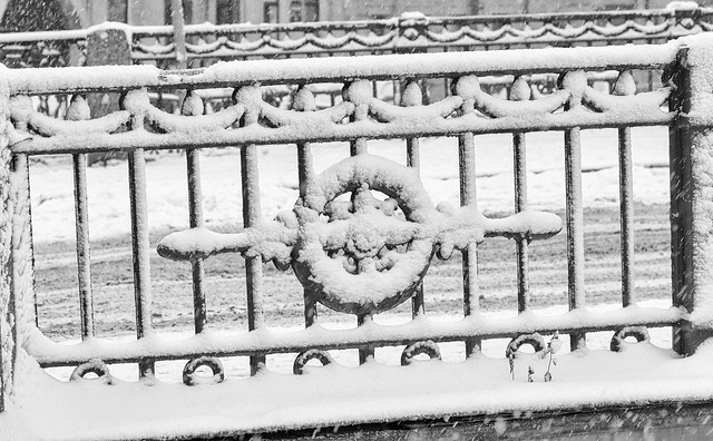 The strong snowstorm in Saint Petersburg. The fence of Kokushkin bridge.  B/w image.