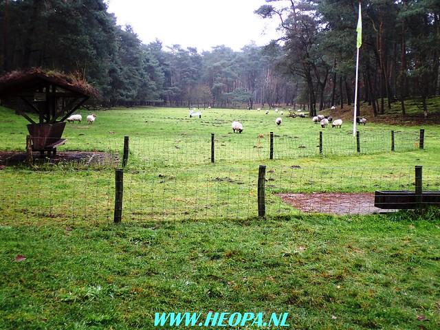 2017-11-29 Driebergen 25 Km  (113)