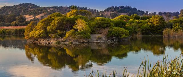 Las Gallinas Wetlands at Golden Hour