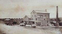 Albion Mill 1875 (2)  - Cowan Street now occupied by Coles Northern Market complex.