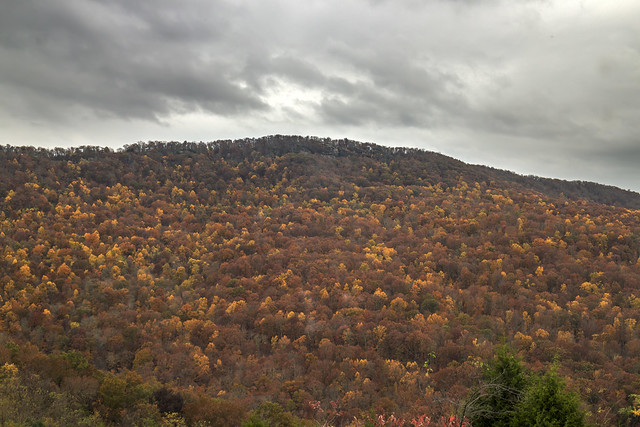 Fall colors, Cumberland Escarpment, Henson Gap overlook, Sequatchie County, Tennessee