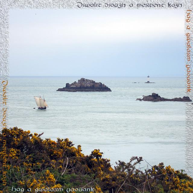 La cancalaise à la Pointe du Grouin