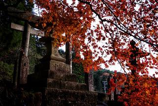 A shrine in Autumn.   by Yūgen