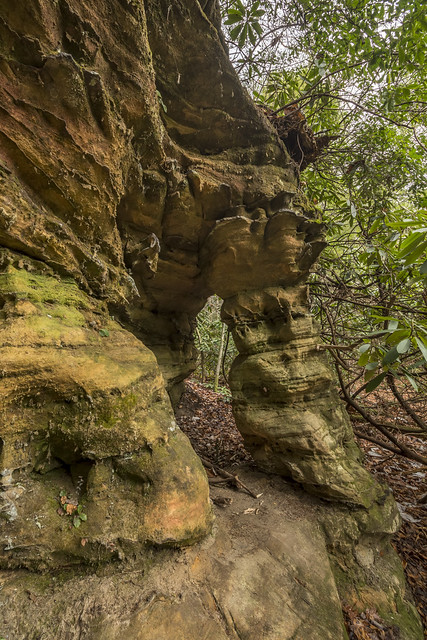 Column Arch, Pickett SP, Pickett County, Tennessee 1
