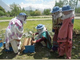 CED UST SEP Beekeepers (4)
