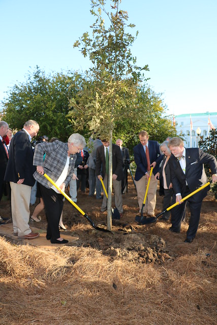 Tree Planting for Farm City