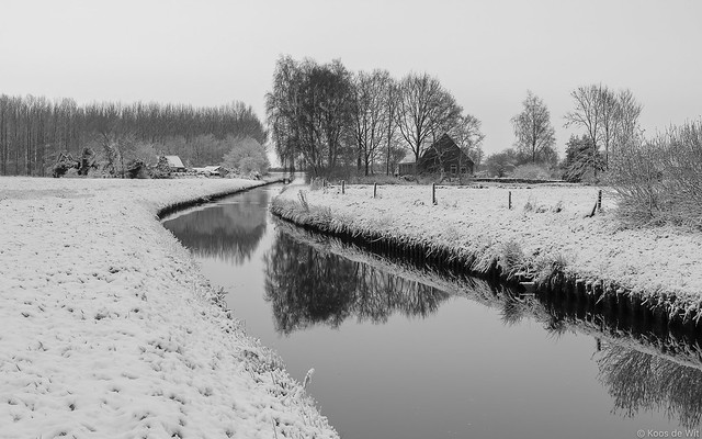 Winter in Harkstede