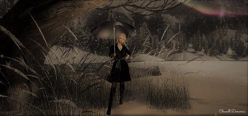 Apres la pluie.....Arrive la neige....