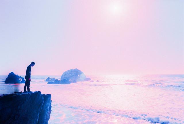 Sentient Shadows at the Sea's Edge