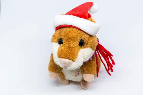 Hamster doll clad like Santa Claus | by marcoverch