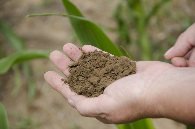 Soil Health_NR_05