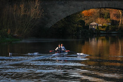 Rowing on the River Avon (Explore)