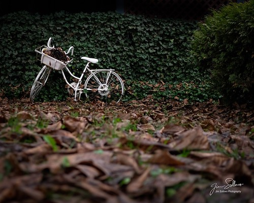I'm sure there are many stories behind this old bike! | by Jim Sollows
