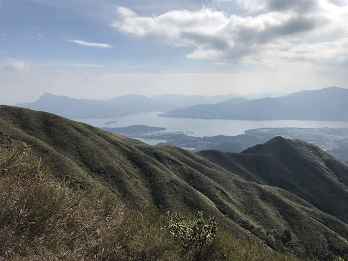 Wilson Trail 9   by avbertrand1