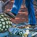 2017 - Mexico - Tequila - Blue Agave Piña por Ted's photos - Returns Apr 24