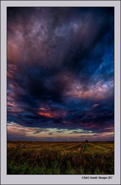 Ocàs a la marjal de Sueca 43 (Sunset at Sueca`s marsh) la Ribera Baixa, València, Spain