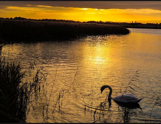 Hickling Broad, Norfolk