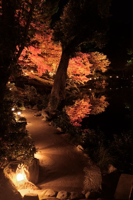 Night scene in Shukkeien garden,Hiroshima city 2017/11 No.2.