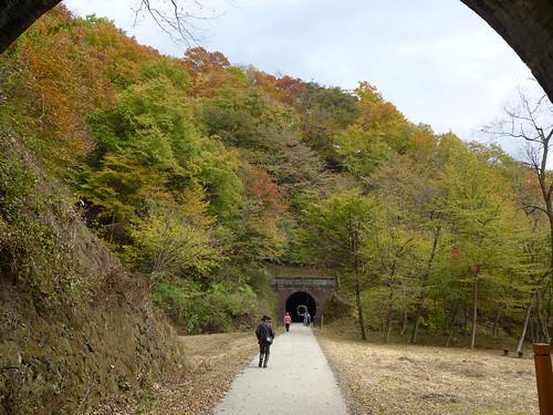 横川駅~旧熊ノ平駅間は廃線跡を利用した散策路「アプトの道」が整備されている