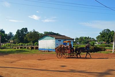 Horse and Cart La Isobel