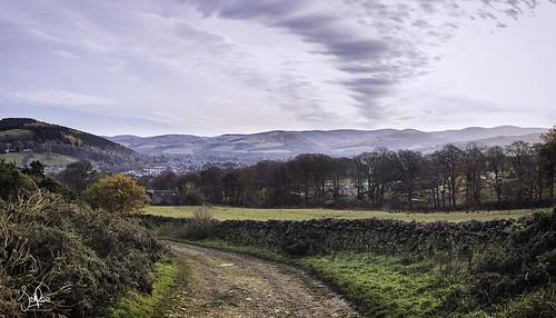 peebles scotland scottishborders town hills hamiltonhill tweeddale peeblesshire panorama view autumn fall road track windingroad trees