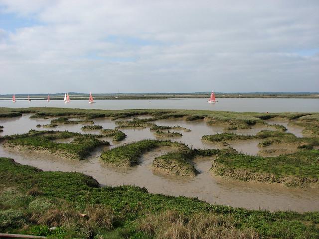 Marshes beside Tollesbury Fleet