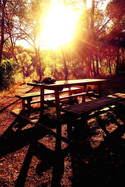 Zona de picnic al atardecer.