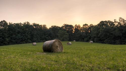 levijacksonstatepark kentucky sunset hay bales field trees landscape canoneos5dmarkiii canonef2470mmf28lusm yextkentucky wallpaper background