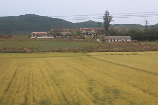 People walking in North Korea   by Timon91