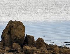 rocks at lindisfarne