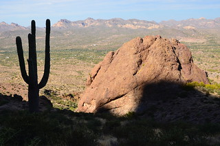 Lost Dutchman Saguaro and the rock | by Pierre Yeremian
