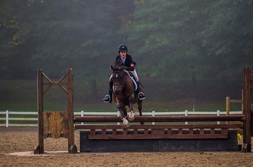 nx500 samsungnx500 horse equestrian pentax50mmf17