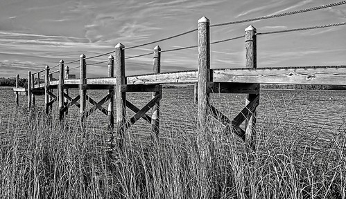 d610 tamron28300xrdiif barrington rhodeisland reeds dock viewnx2 cacorrection river water photoshopelements12 topazdetail photos dxoopticspro blackandwhite