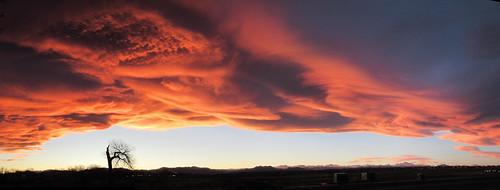 colorado broomfield sunset clouds tree sky orange wavecloud landscape panorama